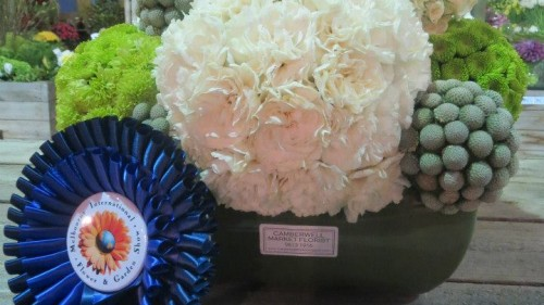 Camberwell First Prize at Melbourne Flower & Garden show