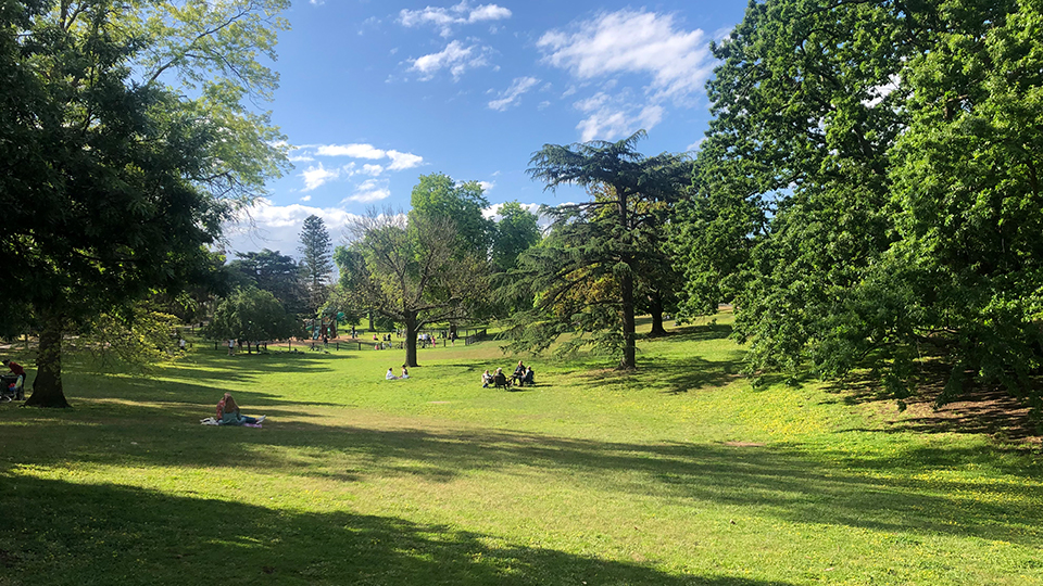 A guide to the best parks in Camberwell